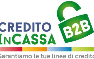Credito in cassa b2b